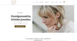 Webshop laten maken in Waregem